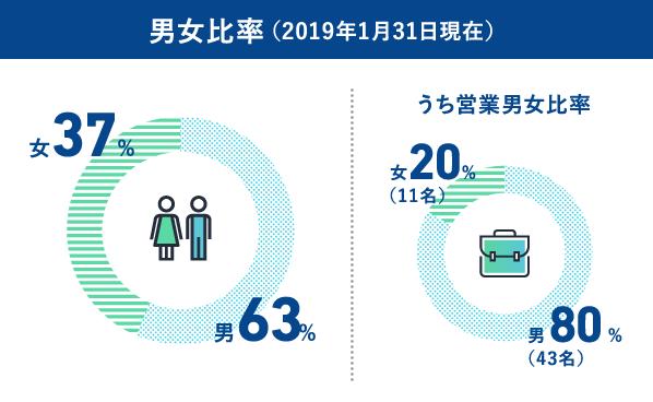 男女比率(2018年3月31日現在)